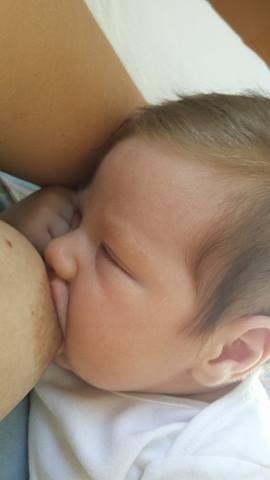 Bebê recebe agora leite artificial (Foto: arquivo pessoal)